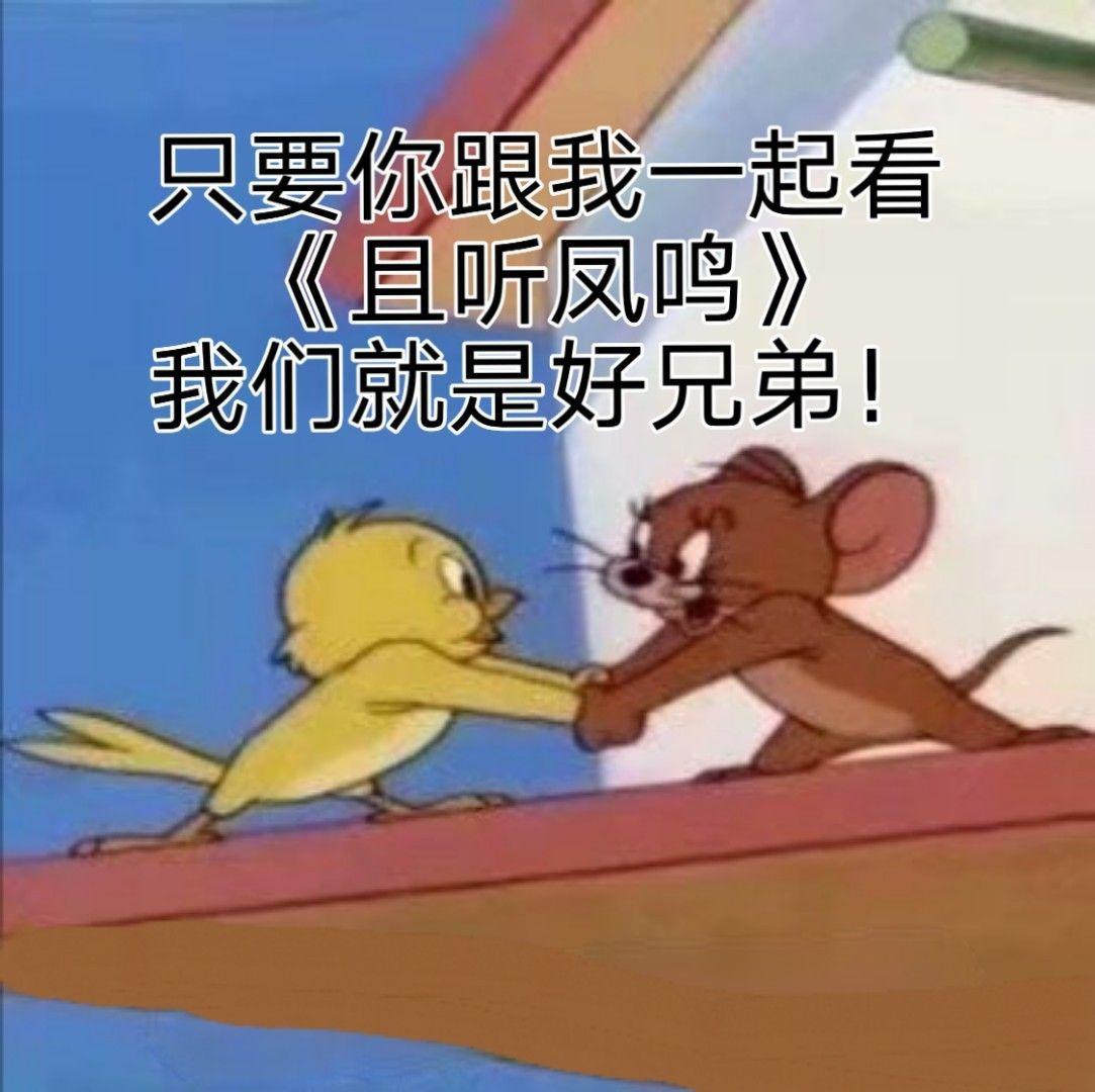 你觉得杨超越在《且听凤鸣》中的表现怎么样?插图(16)
